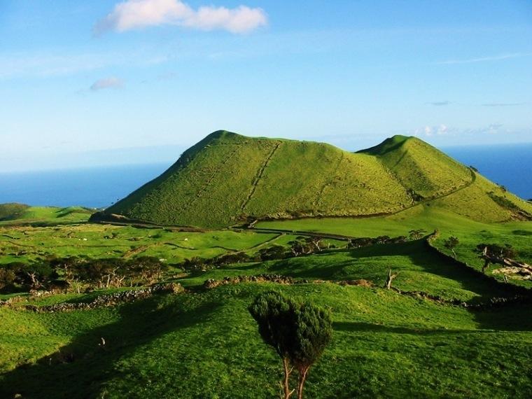 ピコ島のブドウ畑の景観