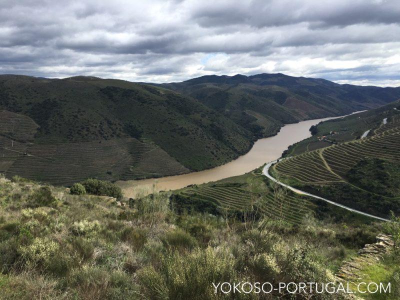 コア渓谷とシエガ・ベルデの先史時代の岩絵遺跡群